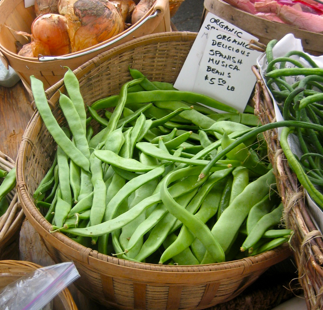 Spanish Musica: A most delicious green bean | Eat this now