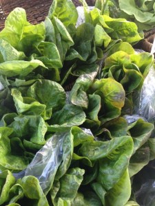 Unless you grow it yourself, the best lettuce is from a farmers market.