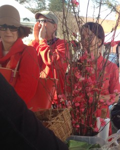 The crowd, seen through a bouquet of flowering quince, wore orange in honor of farmer Nancy Skall