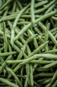 Blue Lake Green Beans at the Sebastopol Farmers Market