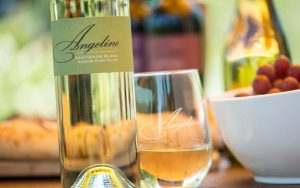 Angeline Vineyards 2015 Sauvignon Blanc is both inexpensive and utterly delightful